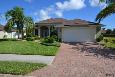 Palm Coast Single Family Home For Sale: 107 Hidden Lakes Dr