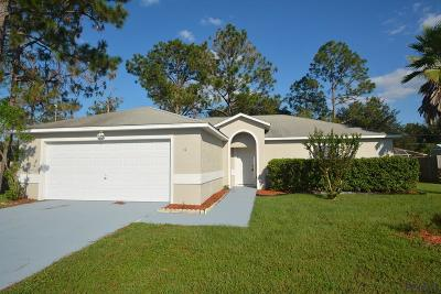 Palm Coast Single Family Home For Sale: 19 Rolling Sands Drive