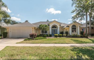 Palm Coast Single Family Home For Sale: 17 Riverbend Drive
