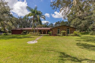 Ormond Beach Single Family Home For Sale: 106 Knollwood Estates Dr
