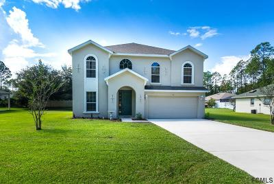 Palm Coast Single Family Home For Sale: 19 Uniontin Court