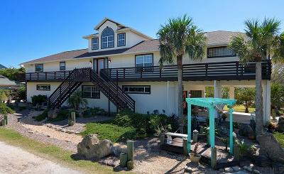 Flagler Beach Single Family Home For Sale: 2667 S Daytona Ave