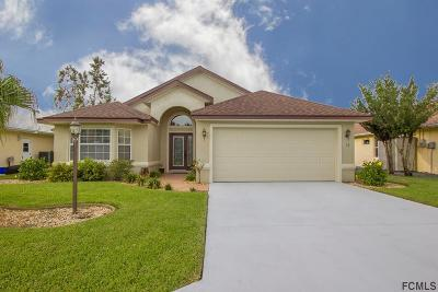 Palm Coast Single Family Home For Sale: 13 Comet Court