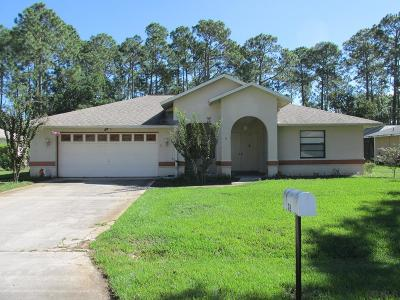 Palm Coast Single Family Home For Sale: 78 Brittany Lane