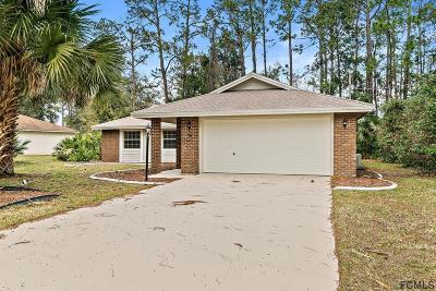 Palm Coast Single Family Home For Sale: 38 Parkway Drive