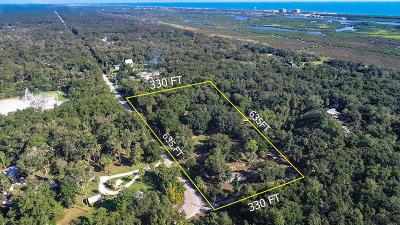 Flagler Beach Single Family Home For Sale: 5995 John Anderson Hwy