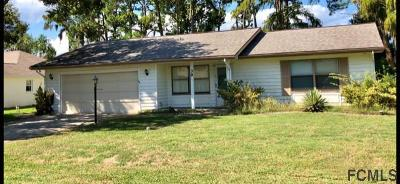 Palm Coast Single Family Home For Sale: 39 Flamingo Dr