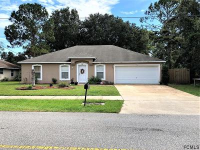 Palm Coast Single Family Home For Sale: 261 Parkview Drive