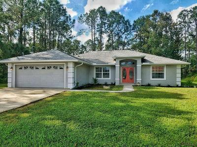 Palm Coast Single Family Home For Sale: 181 Birchwood Dr