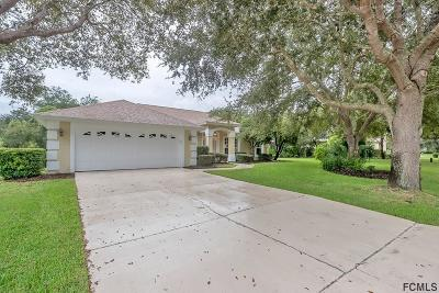 Ormond Beach Single Family Home For Sale: 3709 Donegal Circle