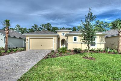 Ormond Beach Single Family Home For Sale: 910 Creekwood Dr