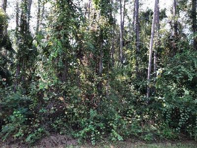 Indian Trails Residential Lots & Land For Sale: 23 Birchbark Ln