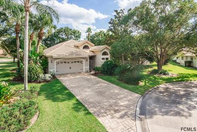 Ormond Beach Single Family Home For Sale: 418 Long Cove Road