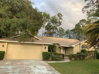 Palm Coast Single Family Home For Sale: 127 Burroughs Drive
