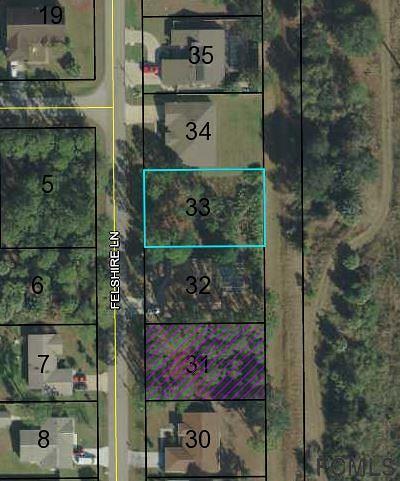 Palm Harbor Residential Lots & Land For Sale: 66 Felshire Lane