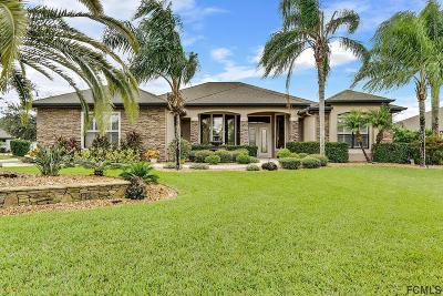 Ormond Beach Single Family Home For Sale: 815 Westlake Drive