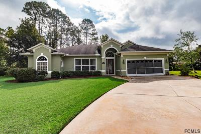 Palm Coast Single Family Home For Sale: 10 Eight Iron Place
