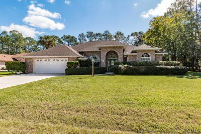Palm Coast Single Family Home For Sale: 21 Elder Drive