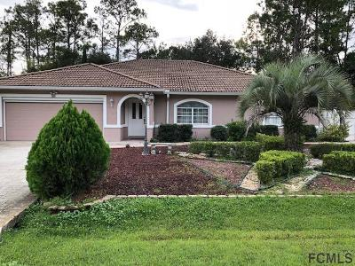 Palm Coast Single Family Home For Sale: 40 Pennypacker Ln