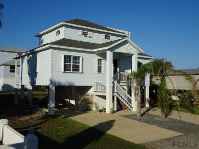 Palm Coast Single Family Home For Sale: 59 Flagler Drive