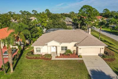 Palm Coast Single Family Home For Sale: 16 Cherrytree Ct