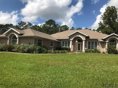 Palm Coast Single Family Home For Sale: 21 Barrister Ln