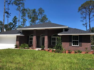 Palm Coast Single Family Home For Sale: 47 Riverview Drive