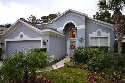 Palm Coast Single Family Home For Sale: 26 Crosstie Court