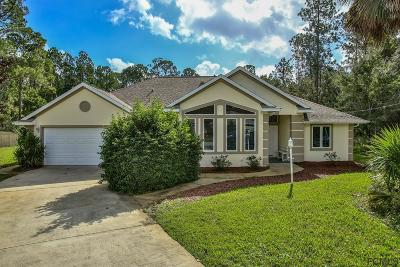 Palm Coast Single Family Home For Sale: 7 Edith Pope Drive