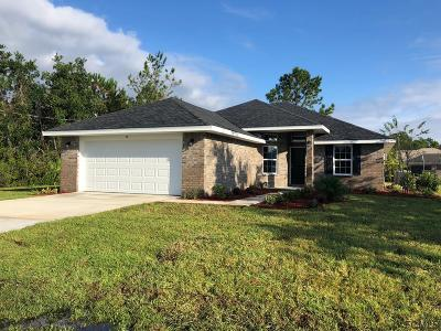 Indian Trails Single Family Home For Sale: 22 Bud Shire Lane