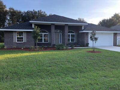 Palm Coast Single Family Home For Sale: 40 Pheasant Drive