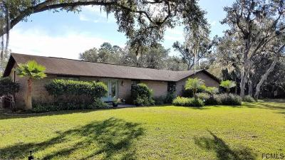 Ormond Beach Single Family Home For Sale: 141 Buckskin Ln