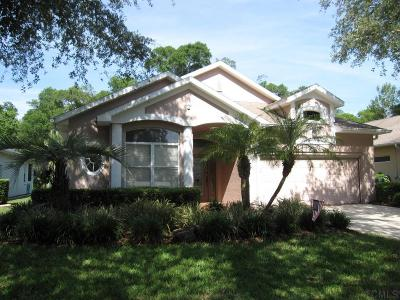 Ormond Beach Single Family Home For Sale: 3207 Galty Circle