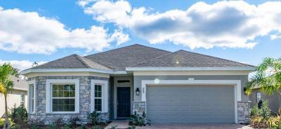 Ormond Beach Single Family Home For Sale: 29 Huntington Place