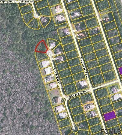 Seminole Woods Residential Lots & Land For Sale: 21 NE Ullman Ct