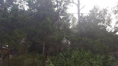 Pine Grove Residential Lots & Land For Sale: 9 Pittman Pl