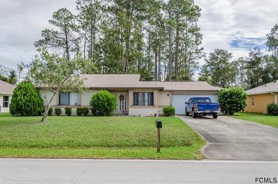 Palm Coast Single Family Home For Sale: 69 Eric Drive