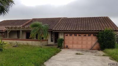 Palm Coast Single Family Home For Sale: 28 Clearview Ct S