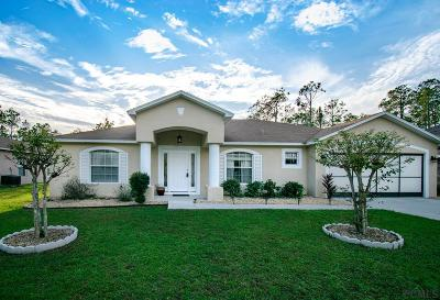 Palm Coast FL Single Family Home For Sale: $245,900