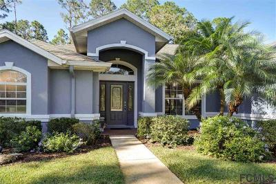 Palm Coast Single Family Home For Sale: 87 Ryberry Drive