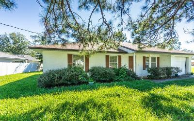 Palm Coast Single Family Home For Sale: 22 Prattwood Lane