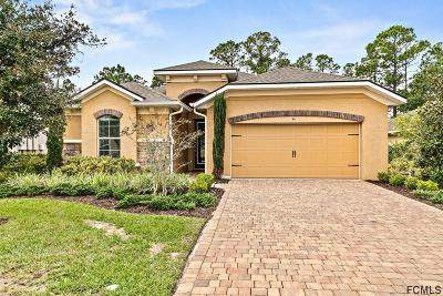 Ormond Beach Single Family Home For Sale: 645 Elk River Drive