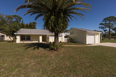 Palm Coast Single Family Home For Sale: 19 Cooper Lane