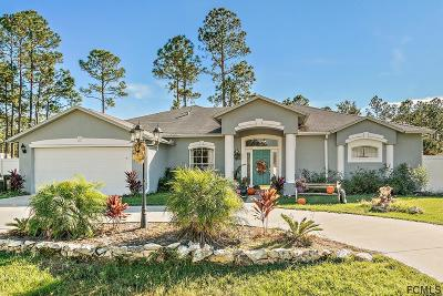 Palm Coast Single Family Home For Sale: 29 Red Mill Drive