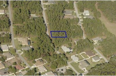 Matanzas Woods Residential Lots & Land For Sale: 12 Lake Placid Ln
