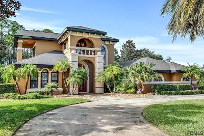 Ormond Beach Single Family Home For Sale: 1076 Hampstead Lane