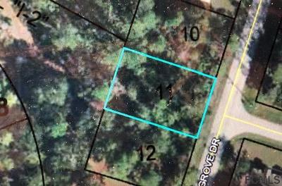 Pine Grove Residential Lots & Land For Sale: 159 Pine Grove Dr