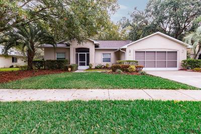 Pine Lakes Single Family Home For Sale: 20 Montauk Lane