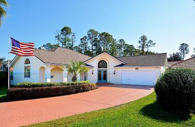 Palm Coast Single Family Home For Sale: 161 Wellington Drive