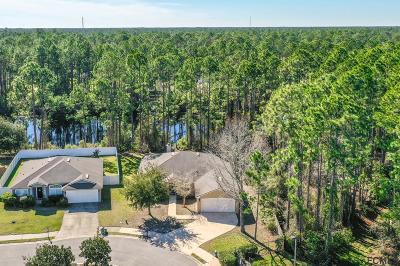 Palm Coast FL Single Family Home For Sale: $259,900